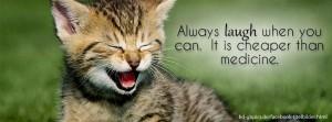 Katze lachend